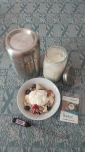 Make yoghurt at home - explained in easy steps - picture of bowl with muesli and yoghurt