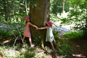 tree hugging - photo of 2 little girls holding hands and hugging a tree