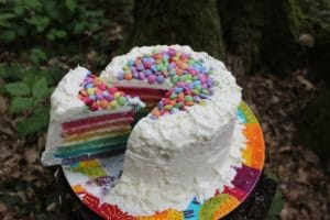 rainbow party food cake