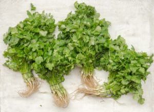 Grow herbs in containers - image of herbs
