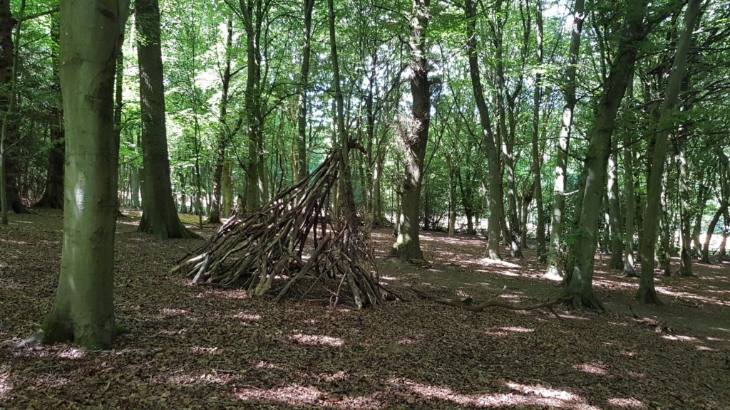 build a den. Image of den in woods.